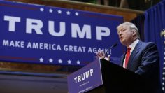 BENADOR:  IN IOWA A NO-BRAINER:  TRUMP…!!!